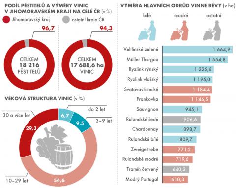 vinice.png